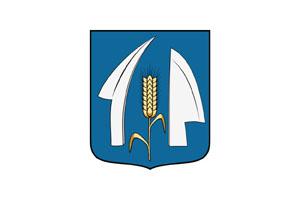 Csot logo